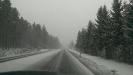 Anfahrt durch die Schneifel