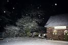 Schneebild 4