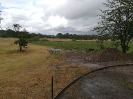 Einen Tag später, am 4.6. setzte der lang erwartete Regen ein.