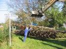 2005-05-13 Weiterer Gleisabbau.