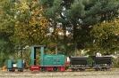 2012-10-24 DS 28 mit Zug